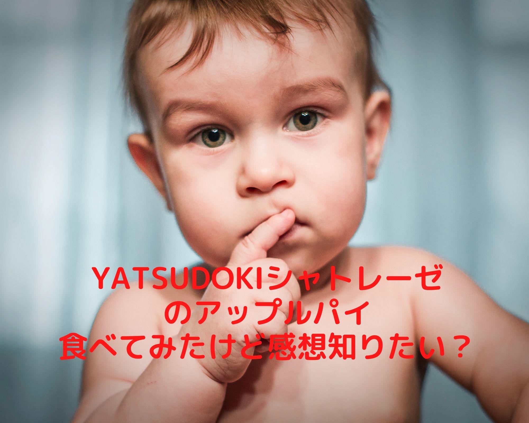 YATSUDOKIシャトレーゼアップルパイ